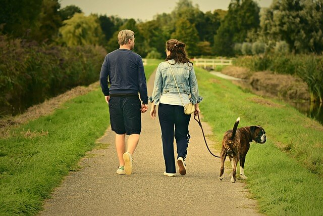 husband and wife on a walk with their dog and talking to each other