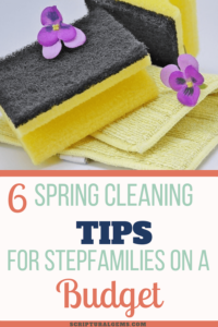 Spring cleaning tips on a budget